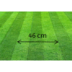 46 cm